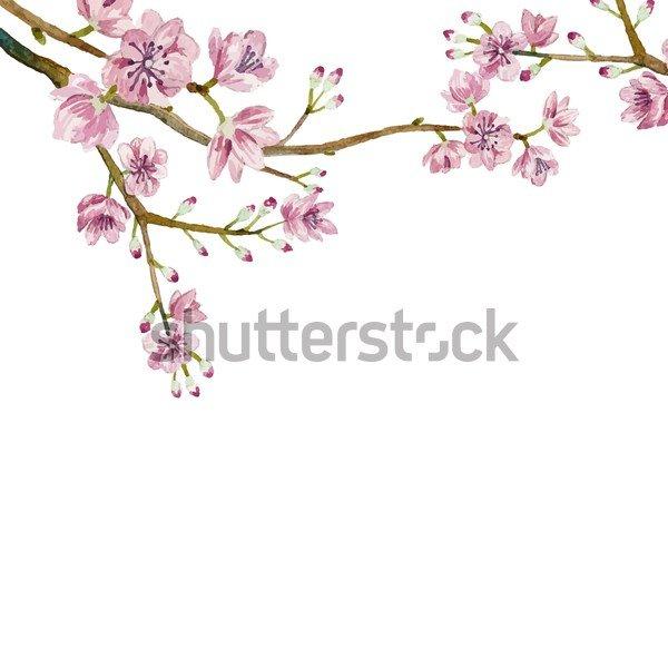 Цветы на белом фоне фотообои