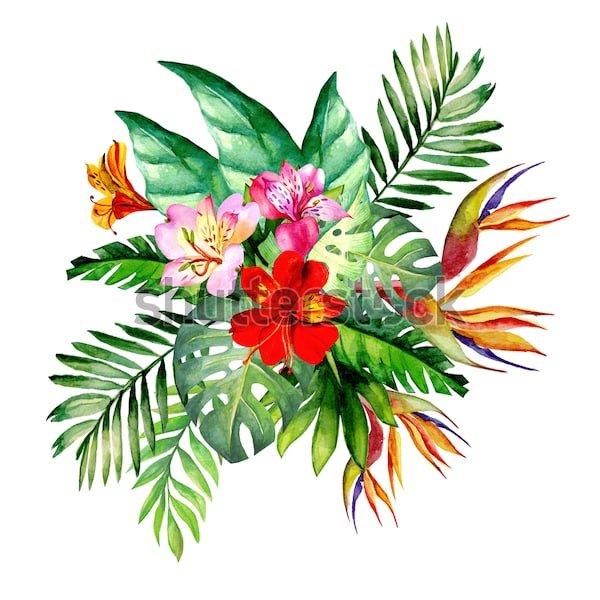 Букеты тропических цветов семь