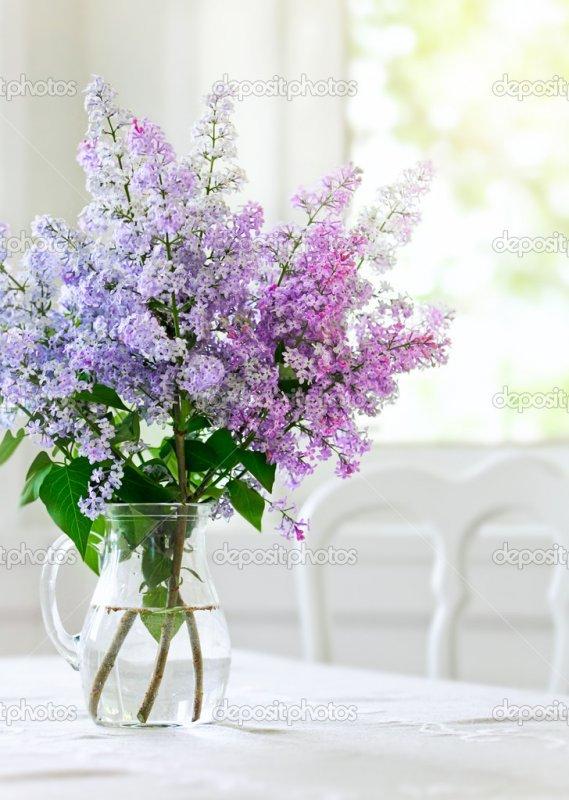 Цветы букет сирени, где купить синие розы в москве недорого